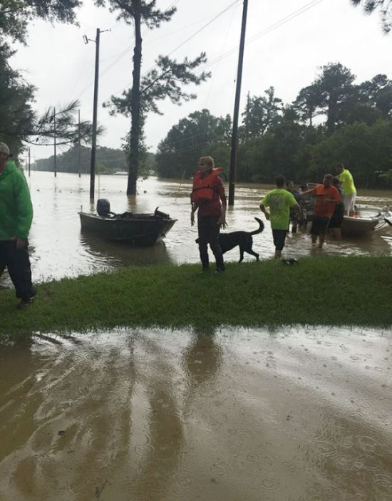 People Are Volunteering To Save Helpless Animals From Drowning In Louisiana (8 pics)