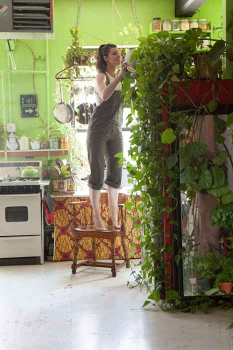Girl Stashes More Than 500 Plants In Her Apartment (16 pics)