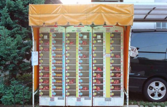 These Days You Can Find Just About Anything In Vending Machines (20 pics)