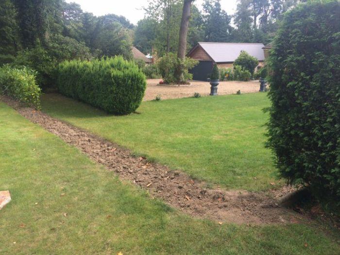 A Serial Bush Burglar Is Stealing People's Hedges (2 pics)