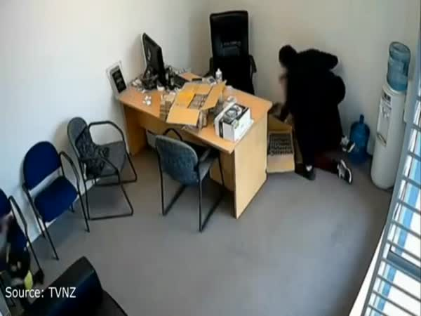 Six Year Old New Zealand Girl Tries To Stop Axe Robbery At Dads Shop