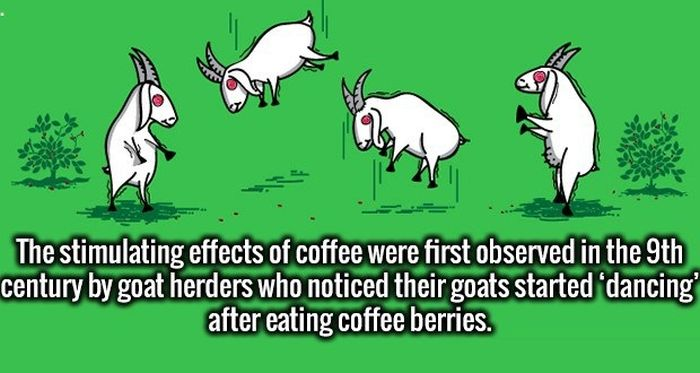 Random Facts That Are Sure To Pique Your Interest (28 pics)