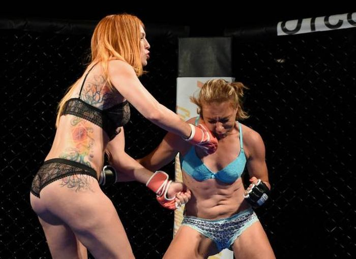 The Lingerie Fighting Championships Is A Sexy Dream Come True (13 pics)
