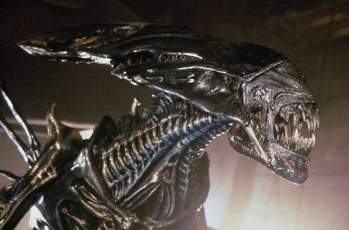 Weird And Interesting Facts About The Movie Aliens (16 pics)