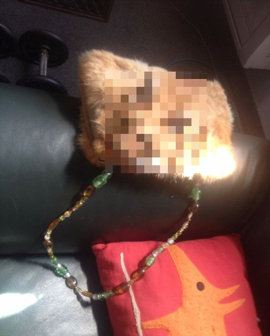 Deceased Cat Gets Turned Into A Handbag (3 pics)