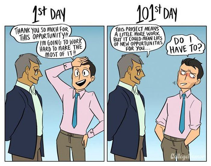 How Your Job Changes From The 1st Day To The 101st Day (6 pics)