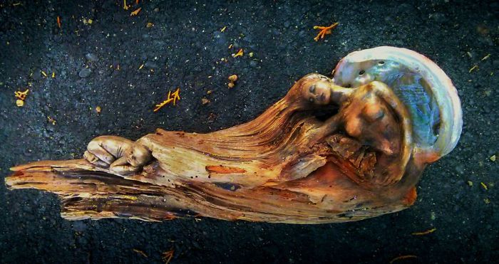 Driftwood Sculptures By Debra Bernier That Will Take Your Breath Away (30 pics)