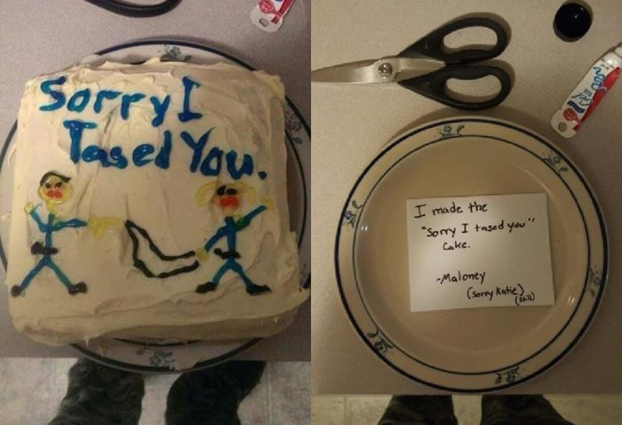 Florida Cop Sued After Baking A Cake For Woman He Tased (3 pics)