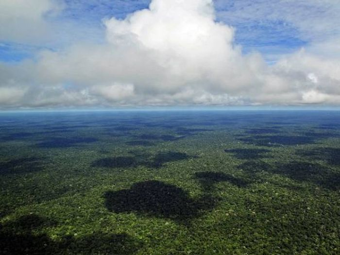 Why The Amazon Is One Of The Scariest Places On Earth (15 pics)