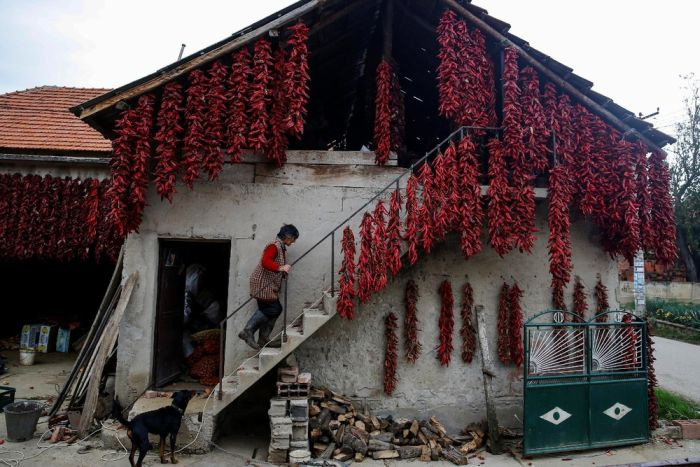 Interesting Pictures From The Serbian Paprika Capital Of The World (16 pics)