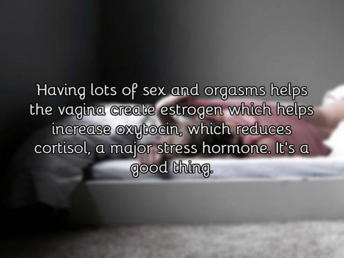 A Few Facts About The Vagina That You Probably Didn't Know (21 pics)