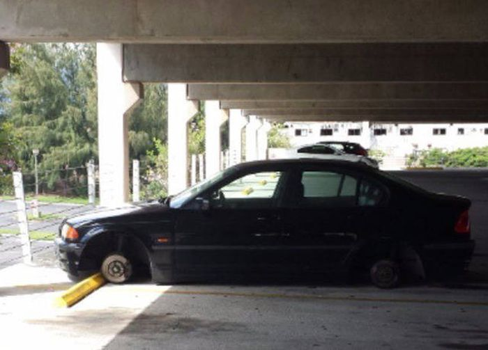 Sometimes Awful Things Happen And There's No Way To Fight It (43 pics)