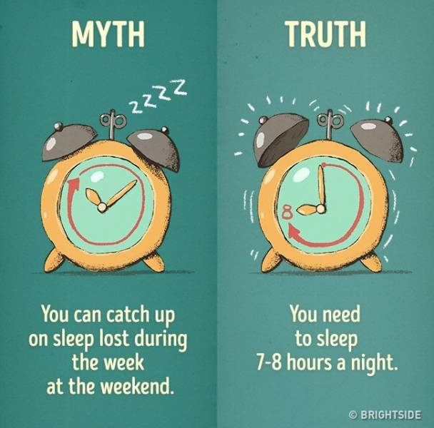 12 Myths About Good Habits Debunked (12 pics)