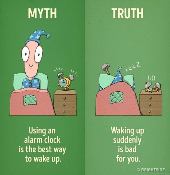 12 Myths About Good Habits Debunked (12 pics)