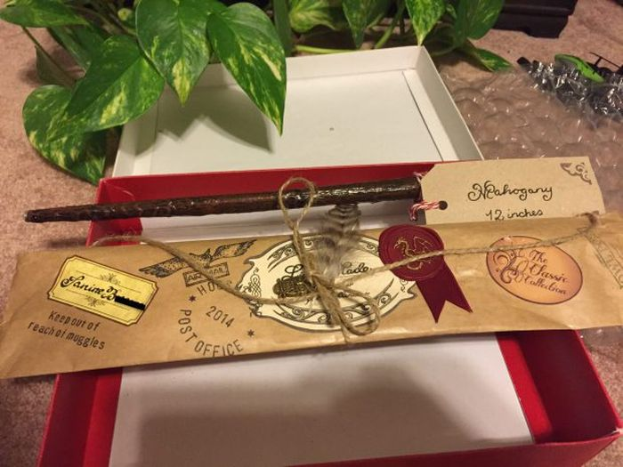 Man Surprises His Wife With Real Life Harry Potter Pensieve (8 pics)