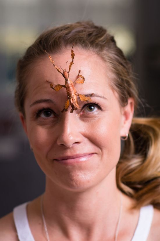 Lisa Van Kula Donovan Is The Steve Irwin Of The Spider World (16 pics)