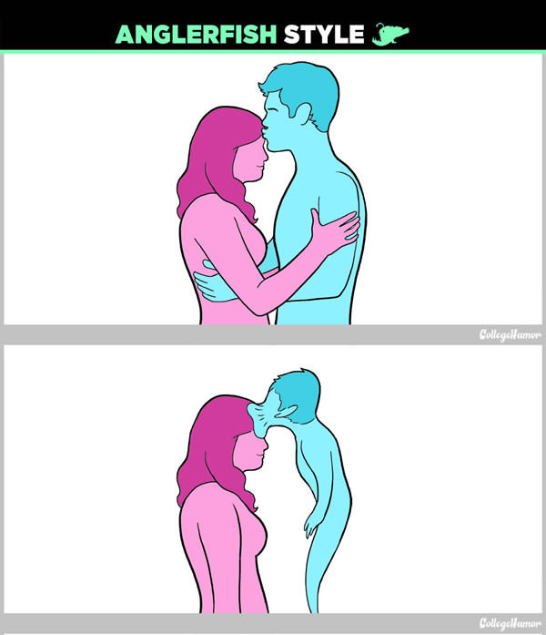 If Humans Actually Had Sex Like Animals (11 pics)