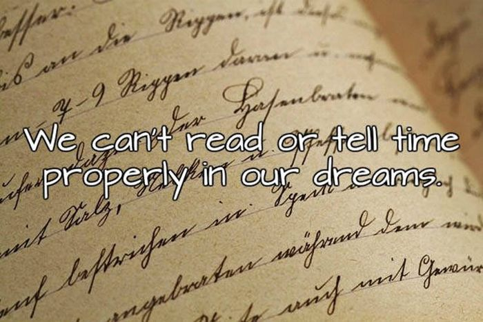 Interesting Facts About Sleep And Dreams That You Need To Know (15 pics)