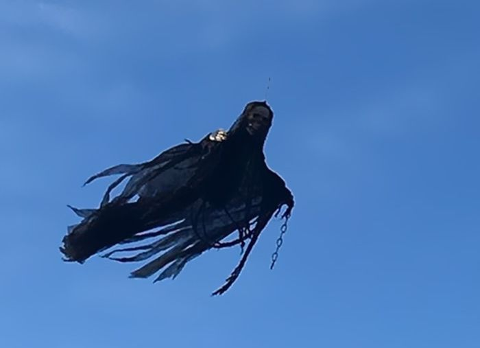 People Are Freaking Out Because This Guy Built His Own Dementor (3 pics)