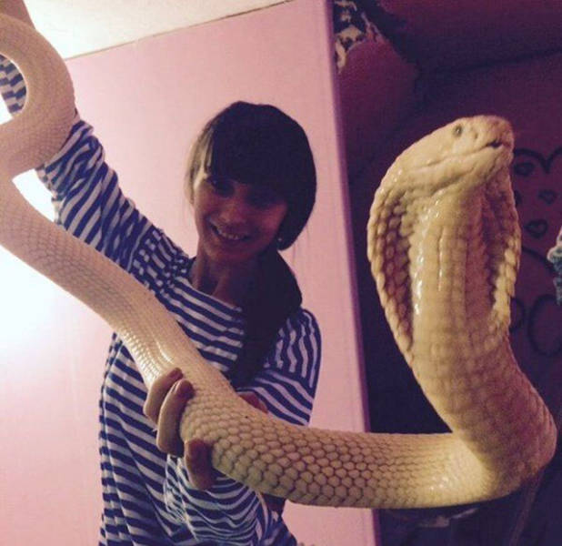 An Epic Compilation Of Weird And Unusual Situations (31 pics)