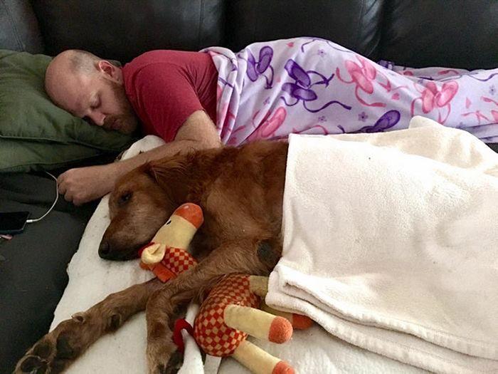 A Heartwarming Tribute To Man's Best Friend (20 pics)