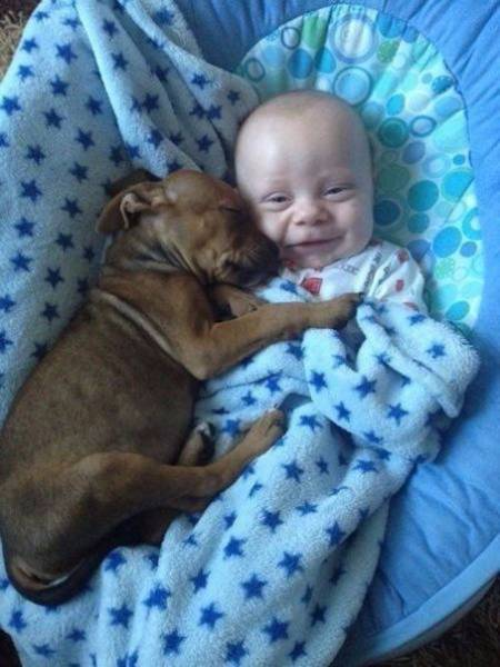 Sometimes Pictures Say A Lot More Than Just A Thousand Words (38 pics)