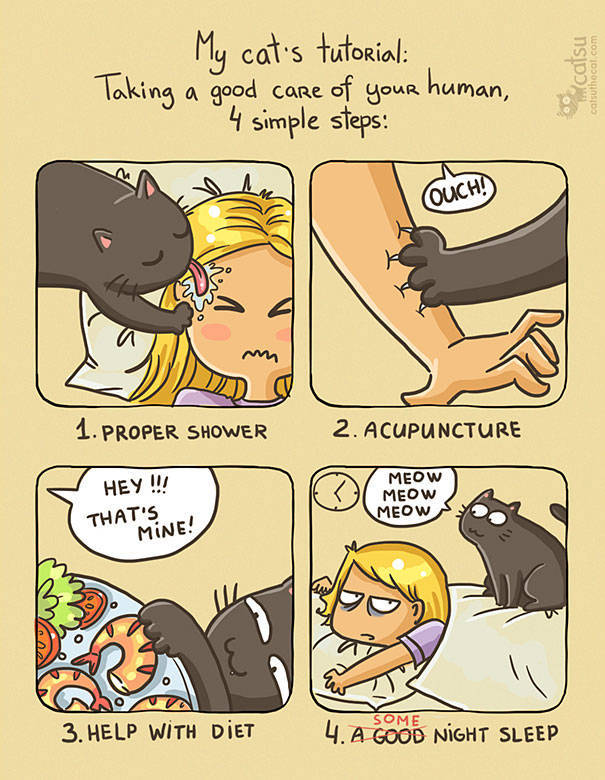 Amusing Comics About What Life Is Like When You Live With A Cat (60 pics)