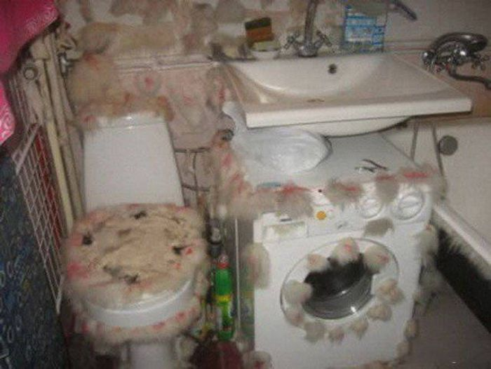 Russia Is The WTF Capital Of The World (38 pics)