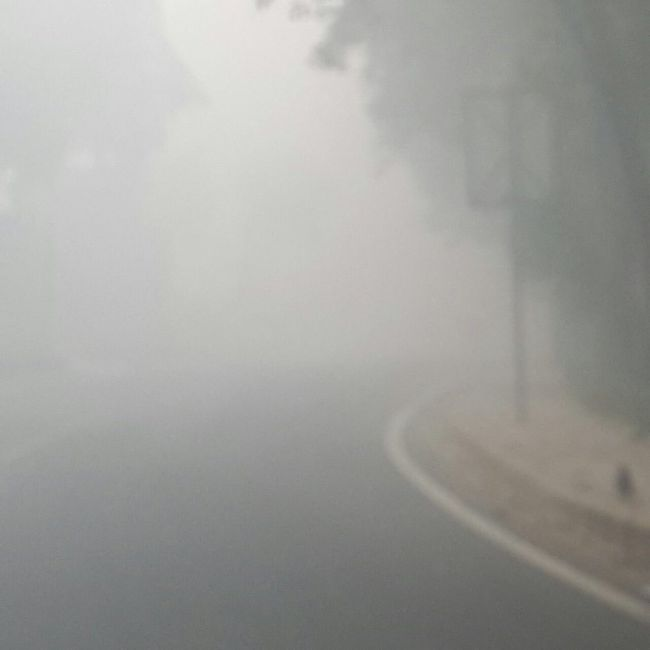 Indian Smog Overwhelms Delhi (6 pics)