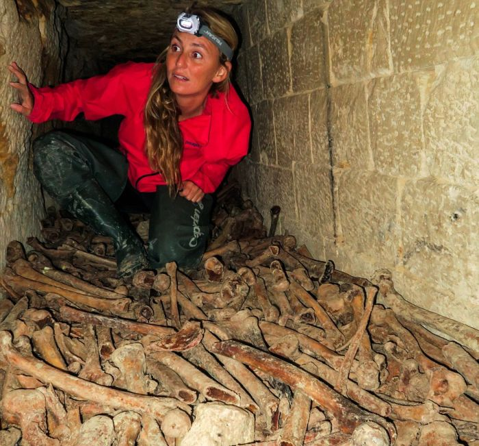 Real Life Indiana Jane Surfs Past Skeletons In The Catacombs Of Paris (13 pics)