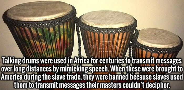 Fresh Facts That Will Lift Your Spirits And Make Your Smarter (17 pics)