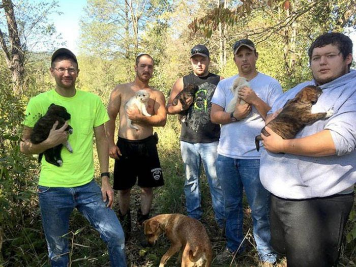 Good Guys Find Stray Dogs At Bachelor Party (9 pics)