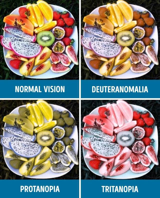 How People With Different Types Of Color Blindness See The World (11 pics)