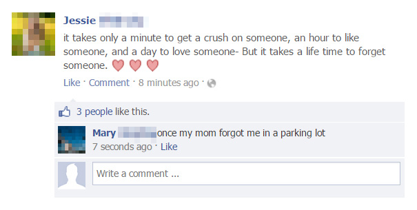 People Who Got Burned By Brutal Facebook Comebacks (30 pics)