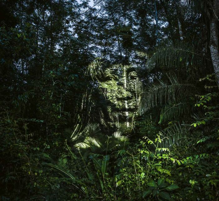 Artist Finds A Way To Create Stunning Street Art In The Amazon Rainforest (9 pics)