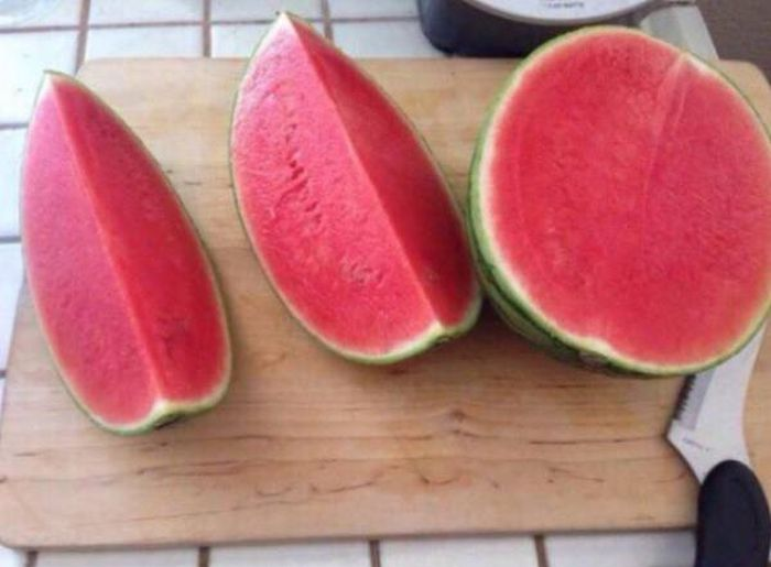 Pleasing Pictures That Will Make Your Inner Perfectionist Very Happy (28 pics)