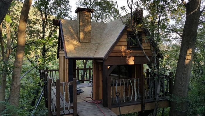 You're Going To Want To Live In This Epic Tree House (78 pics)