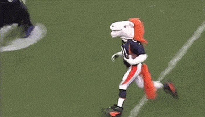 Mascots Take On Football Players In Awesomely Amusing Gifs (17 gifs)