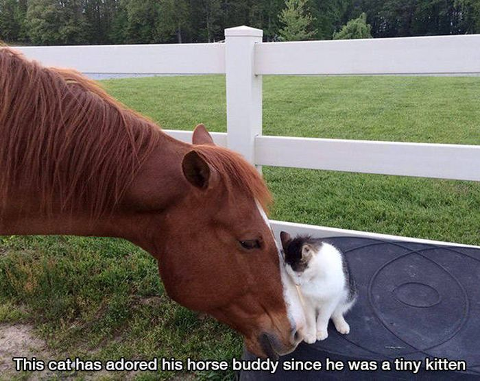 A Quick Reminder That Life Is Full Of Wonderful Moments (40 pics)