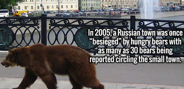Fun Facts That Will Crush Your Ignorance And Make Your Smarter (20 pics)