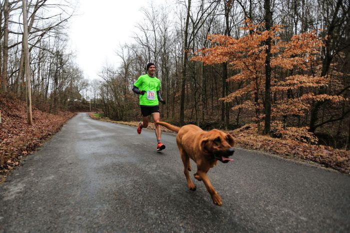 Dog Finishes In Seventh Place While Accidentally Running A Half Marathon (4 pics)
