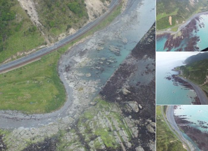New Zealand's Earthquake Lifted The Sea Floor By Two Metres (4 pics)