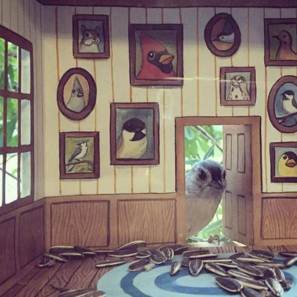 Woman Creates Adorable Tiny Houses For Her Little Bird Friends (8 pics)
