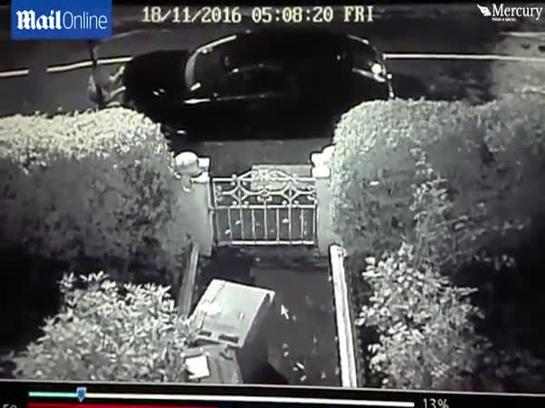 Brazen Thief Steals A Car's Bonnet