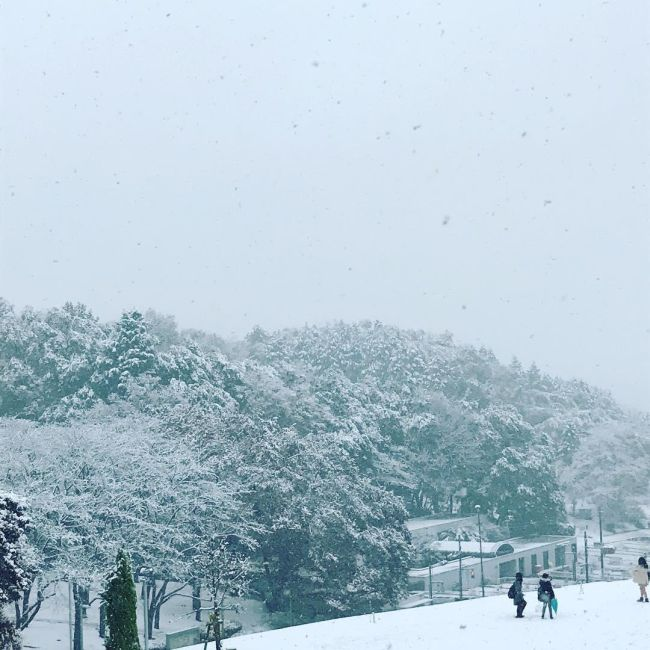 For The First Time In 54 Years It Snowed In Tokyo (11 pics)