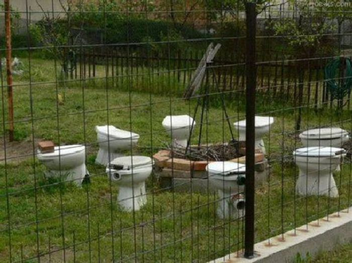 Proof That There's No Shortage Of Strange Toilets In The World (43 pics)