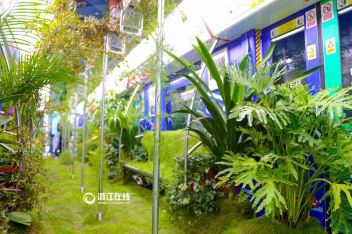 A Chinese Subway Car Has Been Turned Into A Green Forest (7 pics)
