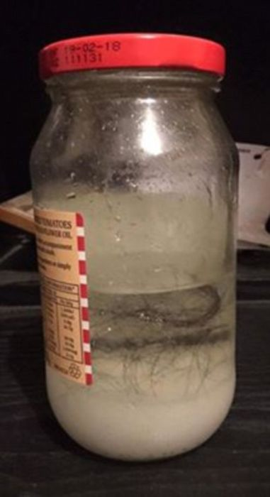 Woman Finds Something Very Creepy Under Her Partner's Dad's Bed (6 pics)