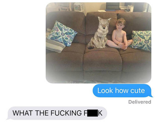 Wife Trolls Husband With A Photo Of A Cute Puppy She Found Outside (12 pics)
