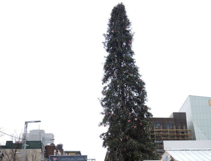 Montreal Lights Up An Ugly Christmas Tree For The Holidays (5 pics)